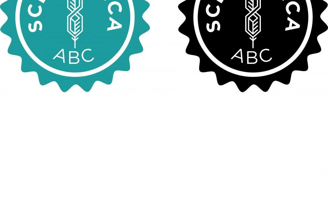 Scenarnica ABC – Kaj so logline, sinopsis, treatment in scenosled?